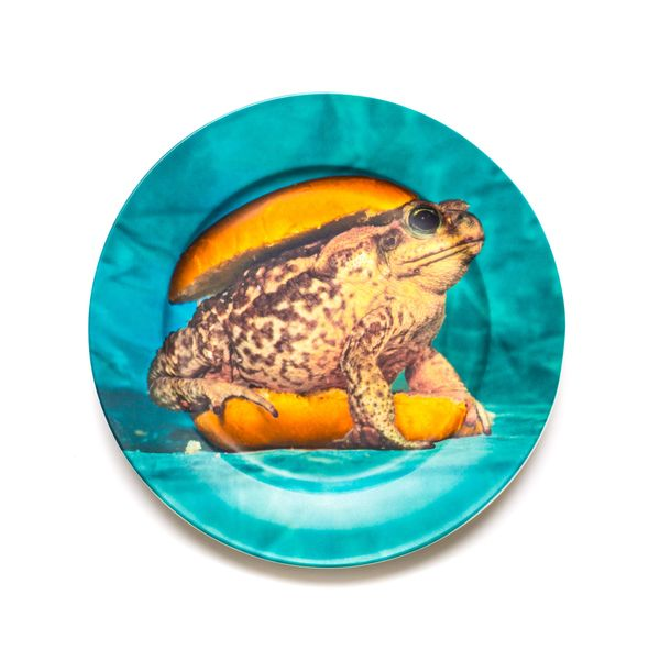 Seletti Toiletpaper Porcelain Plates Toad